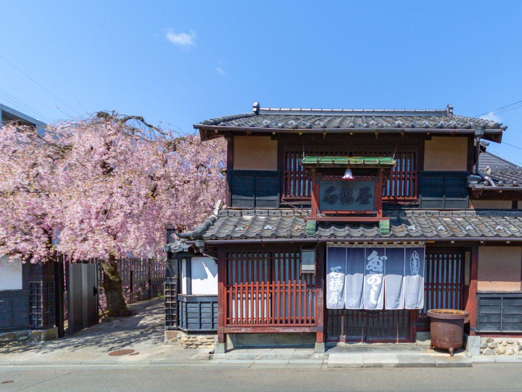 石橋屋と枝垂れ桜(仙台市の古民家)
