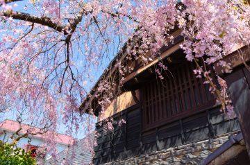 石橋屋(仙台市)